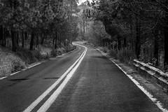 Carretera Ajusco-Picacho (ruifo) Tags: nikond5200 mexico méxico mexiko מקסיקו المكسيك 墨西哥 messico メキシコ 멕시코 мексика mexique