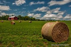 Big Red Barn in the Great Green Field (Thomas DeHoff) Tags: blue red sky beautiful barn farm sony iowa hay a700