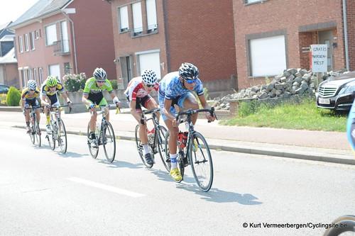 Geel Oosterlo  (68)