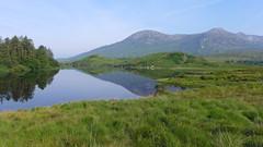 P1320953 (Tipfinder) Tags: ireland irland connemara westport knock achillisland sligo achillhead achillsound acaill