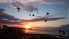 Early morning birds (dksesh) Tags: morning sea beach ferry clouds sunrise dawn waves isleofwight atlanticocean sandown seshadri arundhati viewfromtheroom dhanakoti haritasya haritasa sripadmini sonyxperiaz2