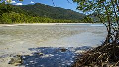 Cape Tribulation beach #EXPLORED 29/7/14 (AB Creative Edge Tasmania) Tags: australia tasmania hobart 61 nikond3200 edgetas abcedge
