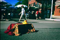 duck (chickentender (Eyewanders Foto)) Tags: film analog pie duck pentax kittens slide slidefilm velvia fujifilm ballard summertime goodtimes 2014 xe pentaxmx fujicolor velvia100f seafoodfest fujirvp100f primefilm greatoldies nwmarketst wandersoff eyewandersfoto analogueway primefilmxe bikesandsummer silverfastscanned