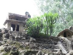 "Nek Chand Rock Garden <a style=""margin-left:10px; font-size:0.8em;"" href=""http://www.flickr.com/photos/83080376@N03/14888555130/"" target=""_blank"">@flickr</a>"