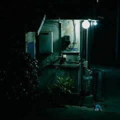porch lights (Akira ASKR) Tags: okinawa  provia100f hasselblad500cm rdpiii  sonnarcfi150mm