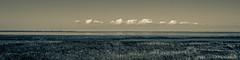 Wieringen View on Den Helder and Texel.jpg (Jack J.S. Schaper) Tags: