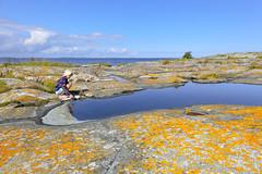 Tärnskär (Anders Sellin) Tags: sea water island sweden stockholm baltic sverige vatten archipelago sommar skärgård ö klippor skär tärnskär