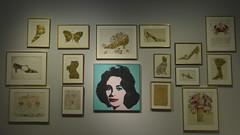 Jacqueline Kennedy, Andy Wahrol (Gaetano Virgallito) Tags: mostra rome roma jacqueline exhibition kennedy jacquelinekennedy wahrol andywahrol