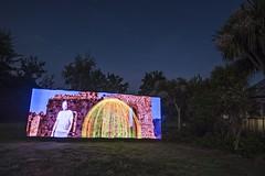 Pixelstick tests, night 2 - legend in the garden (Ningaloo.) Tags: light painting lp pixelstick