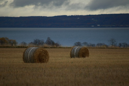 Hay, they're not rollin'