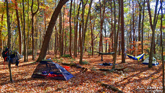 Virgin Falls Campsite (J.L. Ramsaur Photography (Thank You for 4 million ) Tags: jlrphotography nikond7200 nikon d7200 photography photo virginfallscampsite middletennessee whitecounty tennessee 2016 engineerswithcameras cumberlandplateau photographyforgod thesouth southernphotography screamofthephotographer ibeauty jlramsaurphotography photograph pic tennesseephotographer marthasprettypoint virginfallsstatenaturalarea virginfallsstatepark virginfallsnaturalarea marthasprettypointcampsite landscape southernlandscape nature outdoors god'sartwork nature'spaintbrush rural ruralamerica ruraltennessee ruralview fall fallcolors fallleaves fallseason fallinthesouth colorful colors autumn autumncolors autumninthesouth autumnleaves falltrees autumntrees camping tent eno campsite backpack