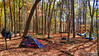 Virgin Falls Campsite (J.L. Ramsaur Photography) Tags: jlrphotography nikond7200 nikon d7200 photography photo virginfallscampsite middletennessee whitecounty tennessee 2016 engineerswithcameras cumberlandplateau photographyforgod thesouth southernphotography screamofthephotographer ibeauty jlramsaurphotography photograph pic tennesseephotographer marthasprettypoint virginfallsstatenaturalarea virginfallsstatepark virginfallsnaturalarea marthasprettypointcampsite landscape southernlandscape nature outdoors god'sartwork nature'spaintbrush rural ruralamerica ruraltennessee ruralview fall fallcolors fallleaves fallseason fallinthesouth colorful colors autumn autumncolors autumninthesouth autumnleaves falltrees autumntrees camping tent eno campsite backpack