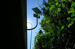 72230 sc 896 96 (scott L charters) Tags: green verdant growth enviroment concrete sky blue traffic sign signs signage galvanise sun glow bends transport life commuting