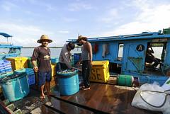 Sg Udang fisherman... a happy man. (<Pirate>) Tags: sungai udang nibong tebal fishing point fish traders fresh october 23rd 1018 is stm ray masters gnd 9soft penang malaysia