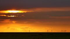 Golden Power (Don Bello Photography) Tags: herbst 2016 dnenhof cuxhavenberensch nordsee norddeutschland northerngermany windkraft windrad sonnenuntergang himmel himmelsbilder himmelsgold himmelsmalerei himmelsfeuer abendlicht abendstimmung abendhimmel abendsonne abendstille abendruhe abendleuchten orange acdsee acdseeultimate9 panasonicphotographer panasonicfz1000 lumixphotographer lumixfz1000 fz1000 reinhardbellmann donbello donbellophotography 2000views 1000views 3000views 100favorites 50favorites
