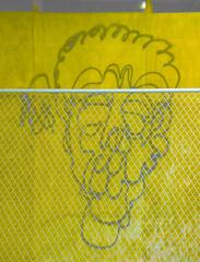 Identikit (Steve Taylor (Photography)) Tags: identikit face art digital graffiti streetart building construction fence chainlink yellow monocolor monocolour fun weird odd strange crazy metal wood plywood man newzealand nz southisland canterbury christchurch cbd city shape surreal