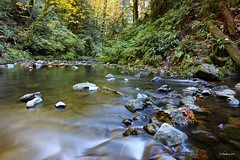 Down the River (CanMan90) Tags: goldstream campsite river victoria britishcolumbia vancouverisland cans2s longexposure canon rebelt3i wideangle nd8 plcir rocks canada landscape trees autumn october outdoors