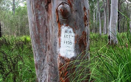 Lot 1498 Lismore Road, North Arm Cove NSW 2324