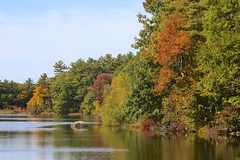 Jacob's Pond 2016 (Read2me) Tags: she cye autumn fall colorful leaves trees water pond lake reflection challengeclubwinner perpetualchallengewinner thechallengefactory gamewinner pregamewinner