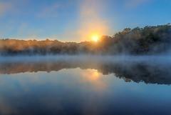 sunrise (P.E.T. shots) Tags: mist sunrise lake pond reflection sunlight