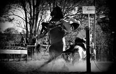 Mica Lopez y El Zorzal (Eduardo Amorim) Tags: gacho gachos gaucho gauchos cavalos caballos horses chevaux cavalli pferde caballo horse cheval cavallo pferd crioulo criollo crioulos criollos cavalocrioulo cavaloscrioulos caballocriollo caballoscriollos pampa campanha fronteira uruguaiana riograndedosul brsil brasil sudamrica sdamerika suramrica amricadosul southamerica amriquedusud americameridionale amricadelsur americadelsud cavalo         hst hest hevonen  brazil eduardoamorim jineteada gineteada