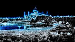 India - Uttar Pradesh - Agra - Taj Mahal - 102b (asienman) Tags: asienman indien agra mahal taj mughal architecture tajmahal asienmanphotography asienmanphotoart unescoworldheritagesite mughalarchitecture muslimart