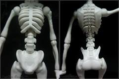 Skelita Art Class. (Mariane Dorateotto) Tags: monster high mattel art class skelita dia de los muertos doll
