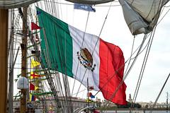 Bandera de Mxico (moligardf) Tags: regata puerto cdiz mxico mjico bandera buque nikon d3200