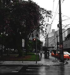 Um dia chuvoso e algumas cores. (Régis Cardoso) Tags: praça square curitiba rain rainy chuva chuvoso santos andrade bep peb black white