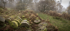 Stones at Bolehill quarry (Keartona) Tags: bolehill quarry hathersage peakdistrict derbyshire panorama stones millstones abandoned autumn november bracken mysterious path trees misty england