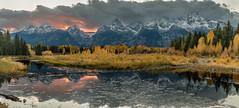Autumn Tetons 2016 #4 (greggohanian) Tags: grandtetons mountains sunset schwabacherslanding beaverdam foliage autumn snakeriver reflection