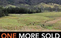 Lot 3 Carrai Road, Willi Willi NSW