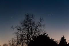 Moonrise during sunset (martin.mois) Tags: moon moonrise sunset blue orange outline trees