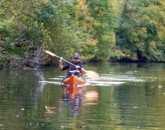 Kayak Dart Rob 10 (chris-parker) Tags: kayak river dart canoe kayaking canoeing devon south west perception