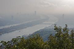 Hiking near Wien 6 (novarex1) Tags: austria osterreich oesterreich vienna leopoldsberg summit view danube donau water bridges wien