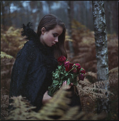 mourning summer in an autumn evening (steve-jack) Tags: hasselblad 501cm 80mm cb kodak portra 800 sample 1998 expired woods forest autumn film medium format 120 6x6