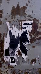 Sexual Predator II (marcn) Tags: nh nashua newhampshire unitedstates us trump maga sexualpredator sign