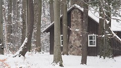 Chestnut Ridge Cottage in WInter (masinka) Tags: winter video short snowfall snow white cottage woods chestnut ridge orchardpark ny newyork nature outdoors landscape 2016 december
