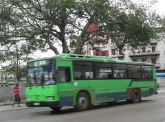 Daewoo-B 168 914-1 (ramon10vm) Tags: guaguasdecuba daewoo bs106