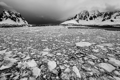 On Another Planet (Baron Reznik) Tags: adventure antarctica bw blackwhite brashice canon1635mmf28lii exploration explore frigidzone horizontal ice kodakgap landscape lemairechannel monochrome nature ocean polar polarregion remote scenic scenicview seaice wideangle 冰 勒梅爾海峽南極洲 南极洲 極地 海冰 自然 극지 남극 모험 얼음 자연 탐험 해빙
