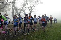 DSC_3451 (Dave Pinnington Photography) Tags: european womens xc trials sefton park liverpool 261116 photos by dave pinnington