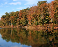 Autumn Color Reflections along Ogle Lake Trail - Brown County Stte Park, Southern Indiana (danjdavis) Tags: autumncolor fallcolor refelction oglelaketrail oglelake indianastaqtepark statepark indiana browncountystatepark