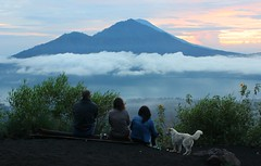 Family Viewing (richardha101) Tags: bali travel asia indonesia hike hiking mountain mount batur nature dogs sky sunrise clouds outdoor