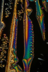 Rhenium by Polarized Light Microscopy (Trav_Hale) Tags: affiliate art birefringence focus focusstacking helicon heliconfocus heliconremote light microart micrograph microphotograph microscope microscopy nikond5300 patterns plm polarized polarizedlightmicroscopy radicalrxl4t refractiveindex remote science stacking underthemicroscope