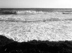 Øresund (holtelars) Tags: pentax 645 pentax645 645n 6x45 smcpentaxfa 45mm f28 120film 120 film foma fomapan fomapan100 fomapan100classic 100iso mediumformat analog analogue blackandwhite classicblackwhite bw monochrome filmforever ishootfilm filmphotography xtol jobo autolab atl1500 homeprocessing larsholte beach waves seascape denmark danmark humlebæk shore