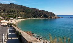 Cavoli (max.grassi) Tags: 2016 adventure avventura elba isola italia italy mtb offroad toscana travel tuscany