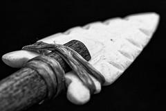 Arrowhead: Frame 2 (apg_lucky13) Tags: tamron60mmf2macro canon jdc jasdaco arrow arrowhead california eosm2 fotodiox jason lakota macro sioux tamron usa 12 halflifesize