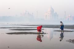 MYI_6070 (yaman ibrahim) Tags: india agra nikon d3 tajmahal yamuna morning water saree mis misty