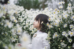 Little Miu. (shine.vietnam) Tags: baby girl little tiny adorable lovely bairnwort flower daisy outdoor light