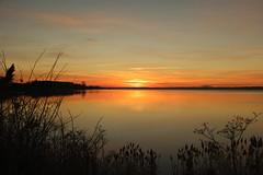 SAM_9045 (Bjerner, DK) Tags: sunrise sun fjord horsensfjord horsens denmark morning water coldwater
